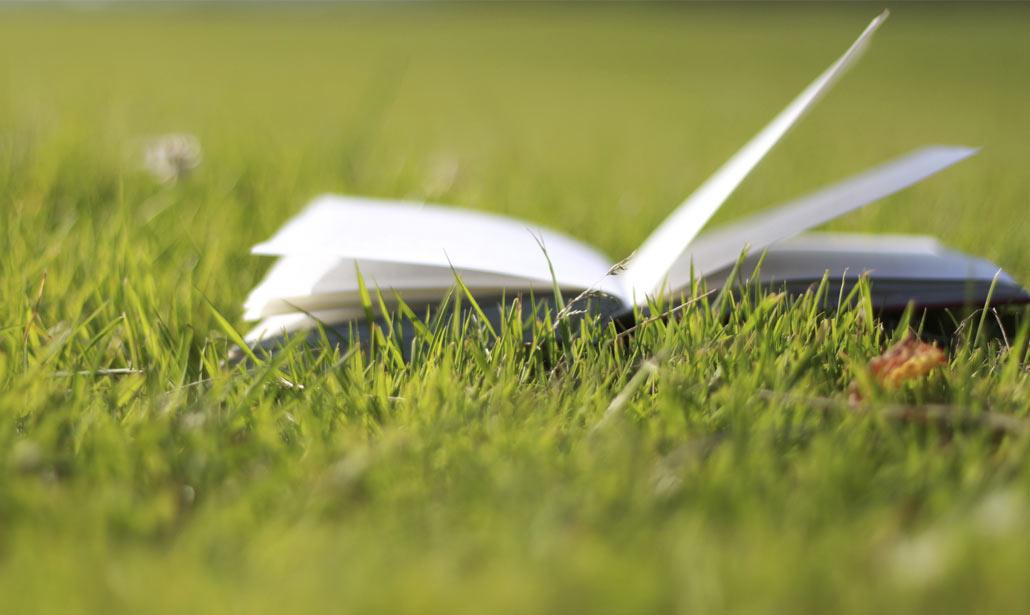 I libri non sono acquistabili singolarmente. Iniziativa valida fino ad esaurimento scorte.